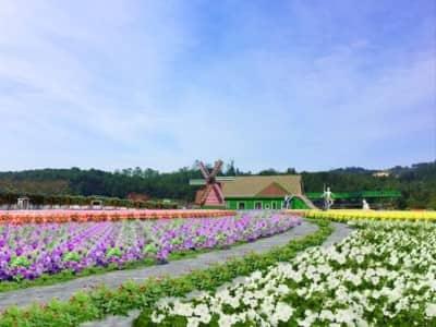 Top 5 những địa điểm du lịch mới ở Đà Lạt bạn nên ghé thăm